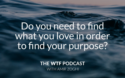 The WTF Podcast – Episode 13: Do you need to find what you love in order to find your purpose?