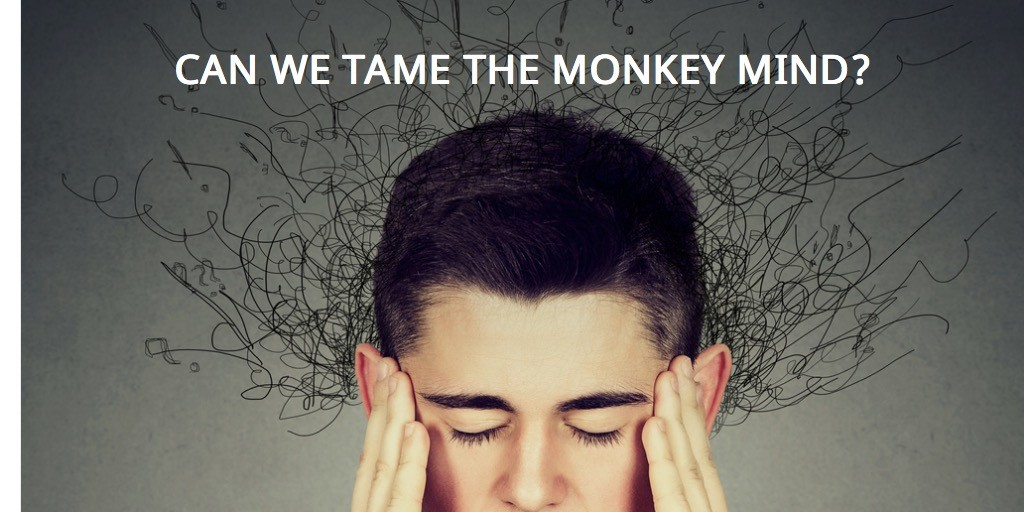 Can we Tame the Monkey Mind?